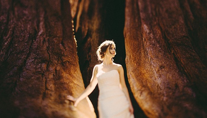 Sequoia National Park Elopement | Peter Amend