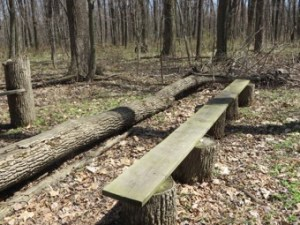 log and slab