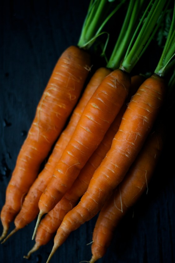nova scotia hodge podge | movita beaucoup | carrots