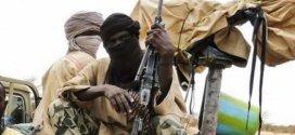 Boko Haram Kills 45 In Fresh Attack on Village in Borno state