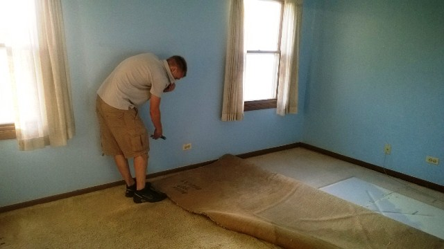 tearing out carpet  |  Mrs. Fancee