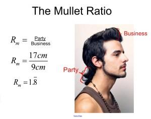 Mullet Ratio