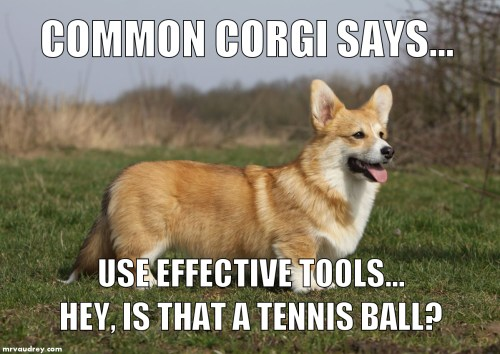 Common Corgi - effective tools