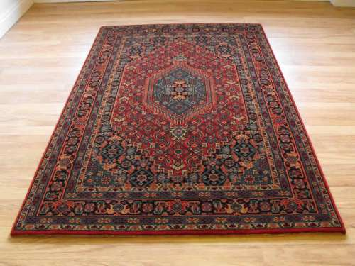 Come to the rug. The RUG. The carpet over there. Quit chewing on the rug, boys and girls.