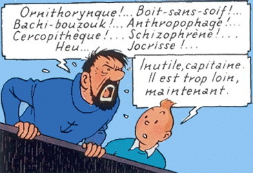 tintin capitaine haddock technique narrative et tics de langage