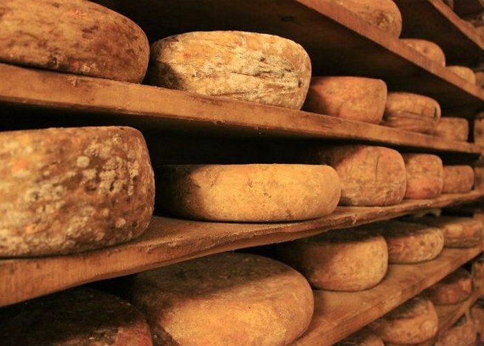 Неожиданно полезно: сыр.