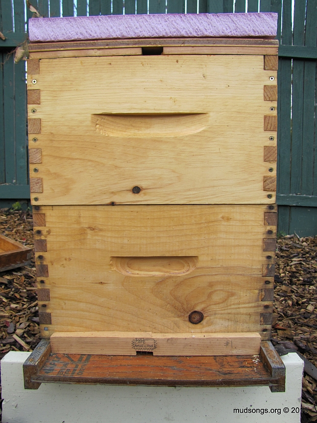Hive with 1.5 inch R-7.5 insulation over inner cover. No outer cover. (Nov. 2, 2010.)