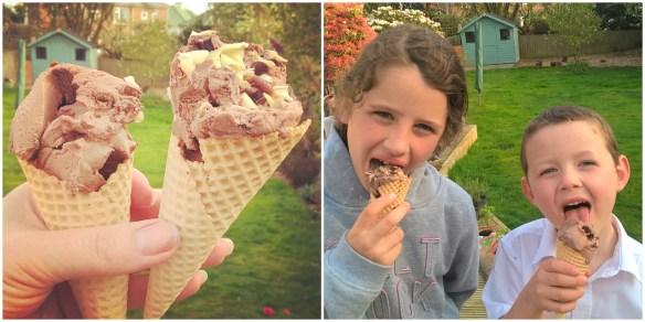 cost cutter ice cream 2