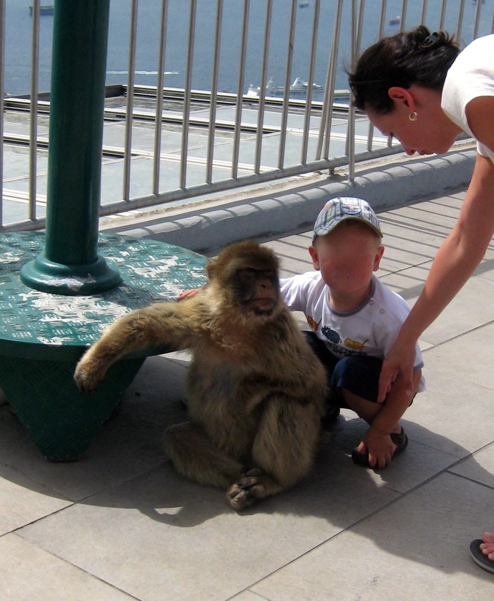 Things to do in Gibraltar with kids