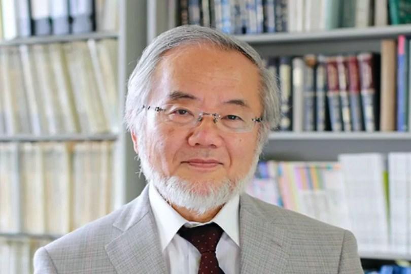 Yoshinori Osumi / Foto: Creative Commons