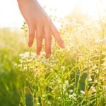 Cómo tener manos suaves y uñas fuertes