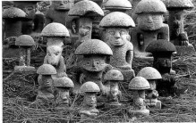 Mushroom_stones_RichardRose_lg