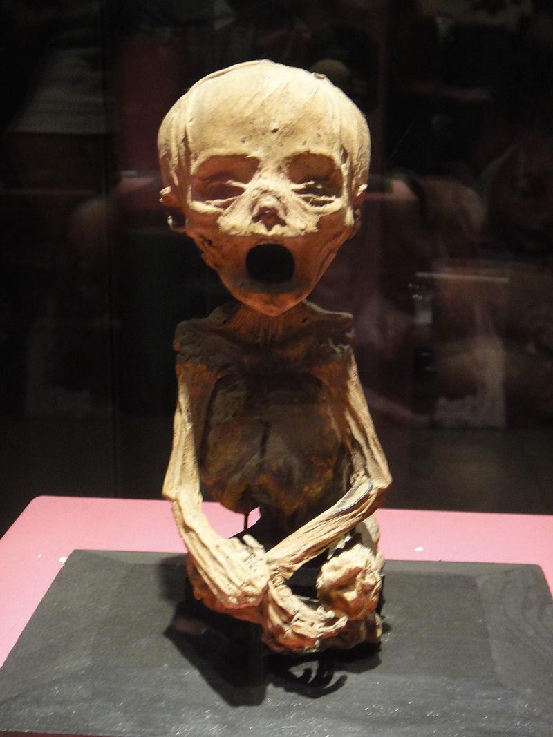 57492d5dc36188b66f8b4597 Las momias de Guanajuato: ¿qué hay detrás del tenebroso mito?