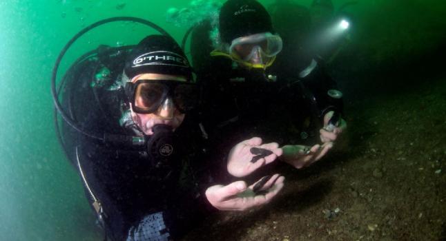 divers Hace 8.000 años el alza del mar separó a Inglaterra y sumergió una sofisticada cultura