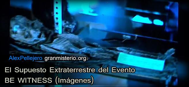 dc3d3b1a336fbbd51585e31c95f45c83-6 El Supuesto Extraterrestre del Evento BE WITNESS (Imágenes)