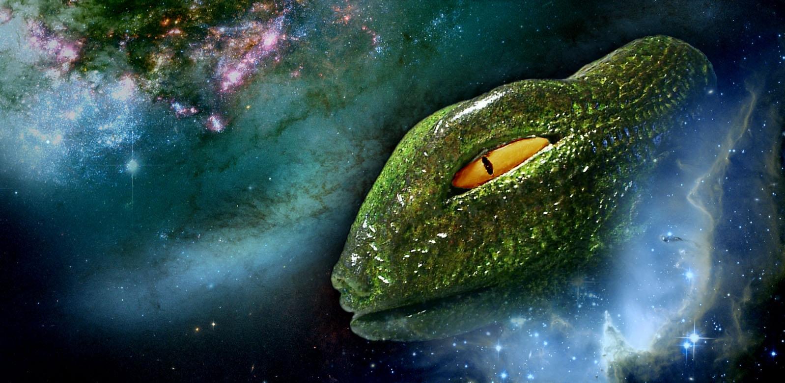 quienes-son-los-reptilianos-la-supuesta-raza-que-busca-dominar-nuestro-planeta-5 ¿Quiénes son los #reptilianos, la supuesta raza que busca dominar nuestro planeta?
