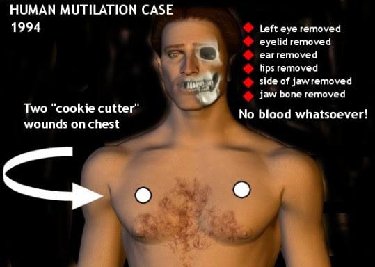 y5vDTGHXGn7fTmQOcbBUUsDI9TDHqz2azQGlH-BvUdfP-BAsmZz5_Mf0Ht-m0rDm0B4HIFue5XQNJ9w_RYmk7QPgfi2_YJAK2xIfIJgE54RRZIFa75AvMgs0-d-e1-ft Mutilaciones no solo de ganado tambien personas