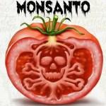 Las 10 mentiras que Monsanto quiere quecreamos