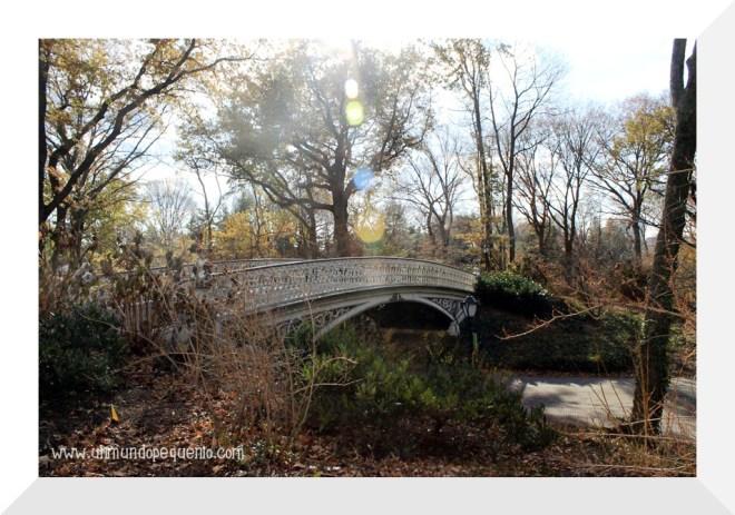 puente central park