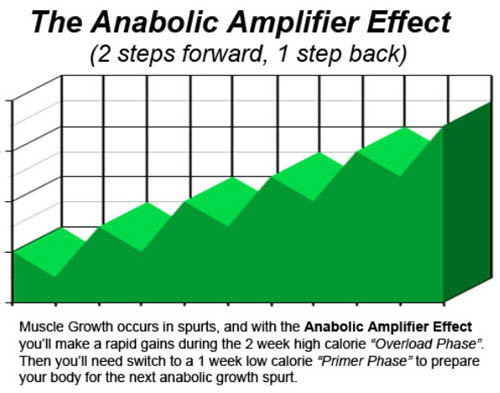anabolic amplifier