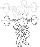 Las sentadillas son un ejercicio compuesto para desarrollar músculos más rápido