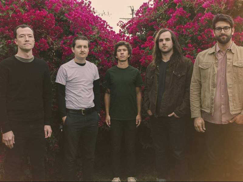 toucheamore_christiancordon_bougainvillea_2_color