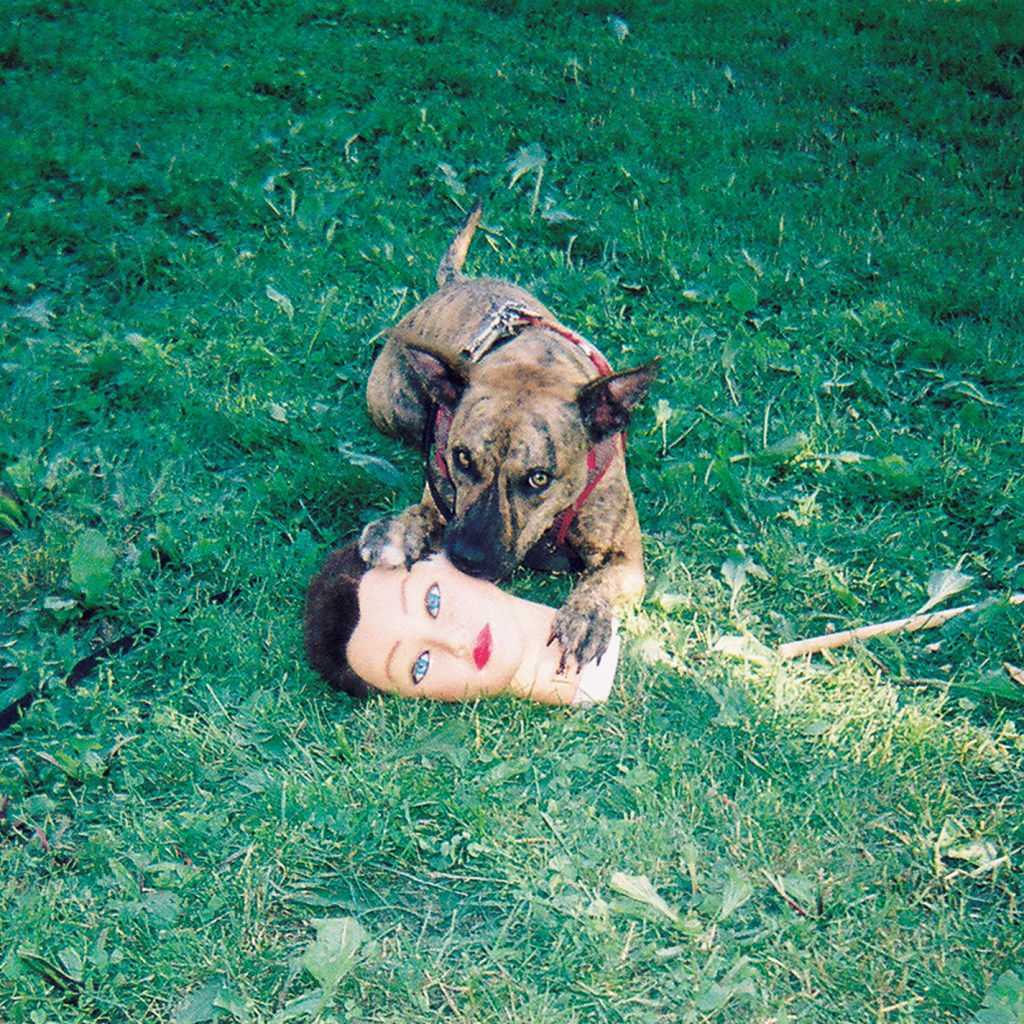 joyce-manor-cody-album-cover-1