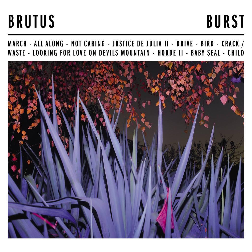 bruts