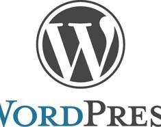 WordPress clean logo