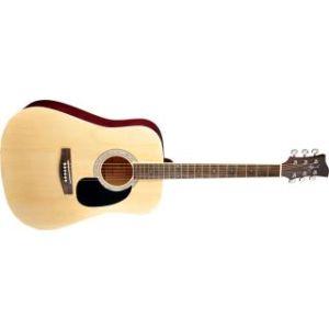 Акустическая гитара Jay Turser JJ45 N
