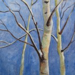 45513 Winter Birch Acrylic 7x5