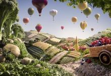 Featured Essay no.1: Innovating Foodscapes