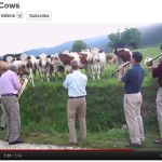 Interesting YouTube Music Video Series #14 – The New Hot 5 Plays Jazz for Cows
