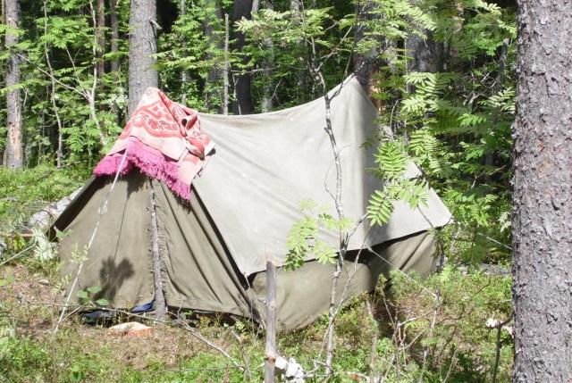 Весь лагерь защитников Сунского бора - одна старая палатка. Фото: Алексей Владимиров