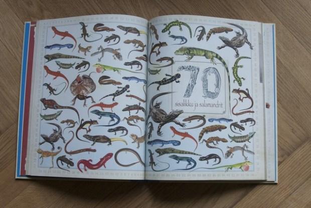 loomad raamat096_v