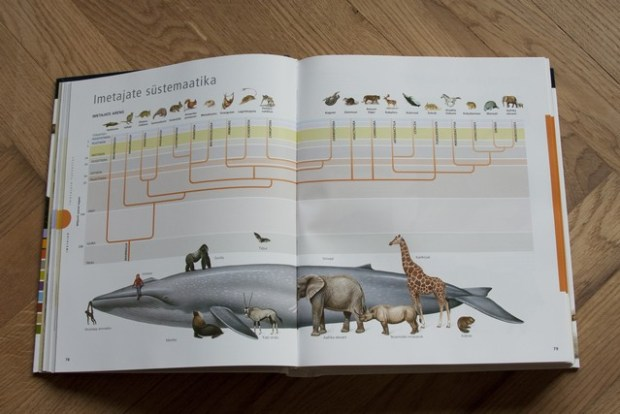 raamatud loomadest_049_v