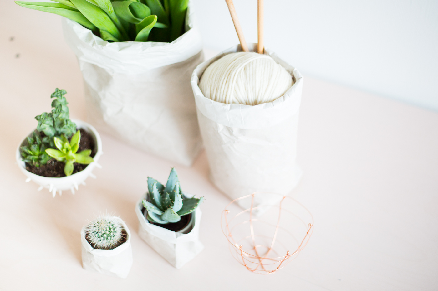 Packing-Paper-Sack-Planters-@fallfordiy-24