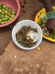 A local woman in Kaga-Bandoro selling a great source of protein and a central African delicacy—caterpillars! WFP/Dominique Ferretti