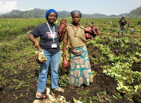 Mireille participe à la récolte pour une activité VCA (vivres pour création d'actifs) appuyée par le PAM à Kitshanga/Kageyo dans le Rutshuru