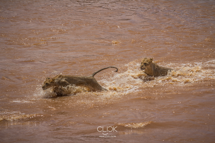 Visiting Samburu National Park