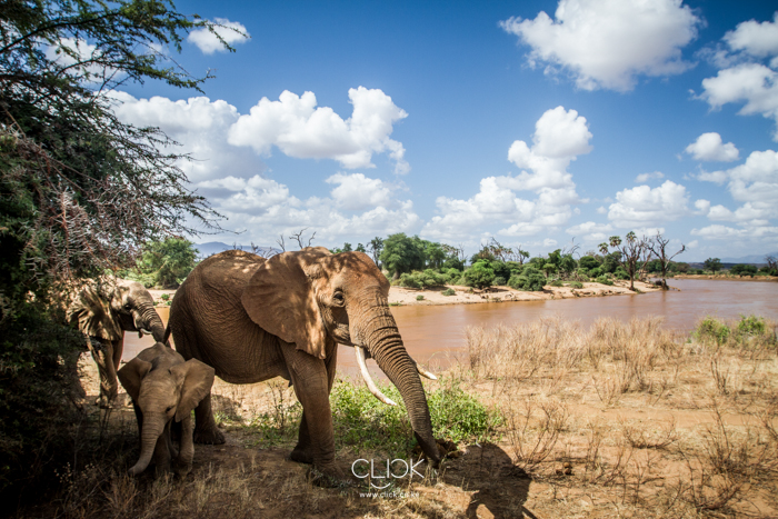 Samburu_National_Park-9