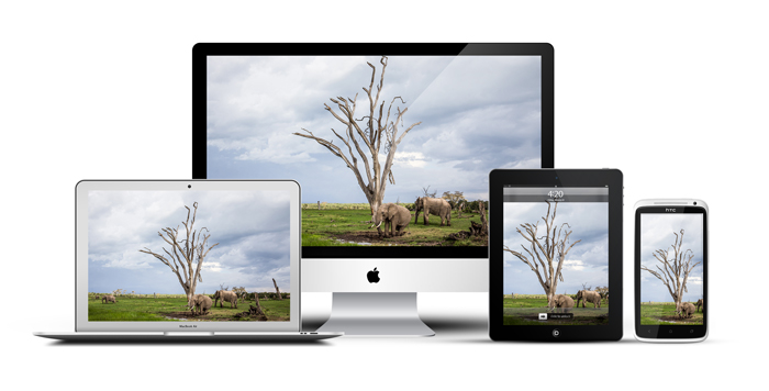 African_Screens_Wallpapers_Ol_Pejeta_Elephants-Devices