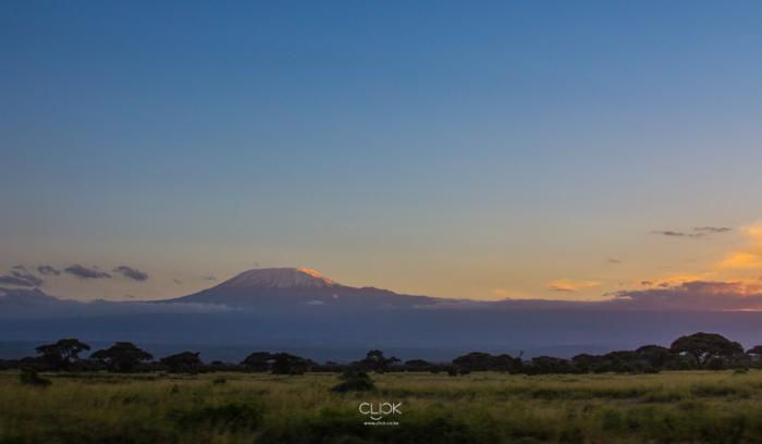 Amboseli_Onetouch_Live-28