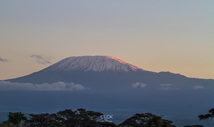 Amboseli_Onetouch_Live-29