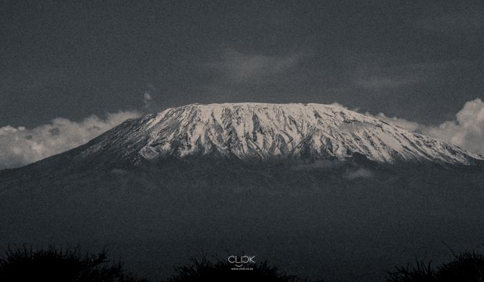 Amboseli_Onetouch_Live-3
