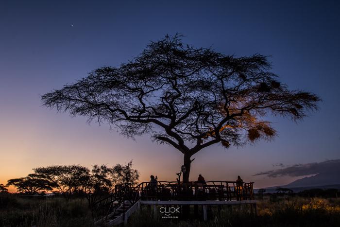 Amboseli_Onetouch_Live-30