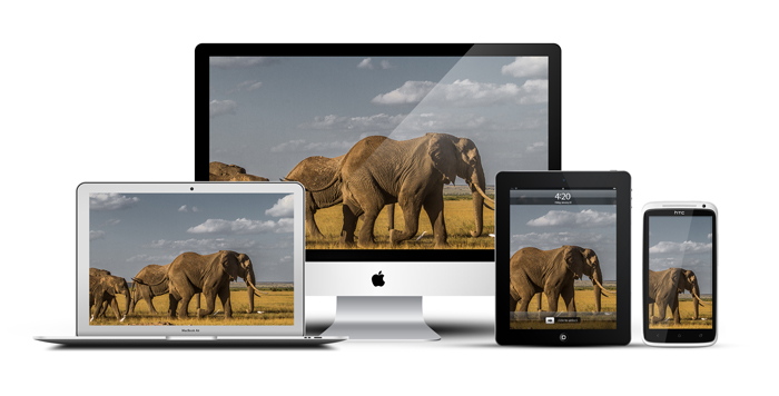 African_Screens_Wallpapers_Amboseli_Elephant_Safari_Devices