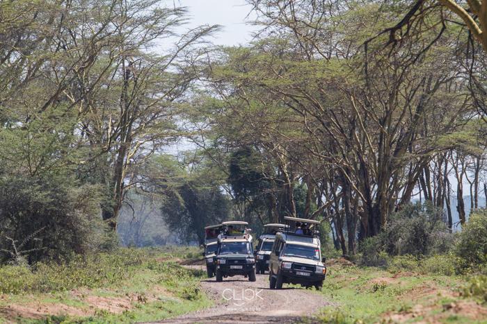 Lake_Nakuru-7