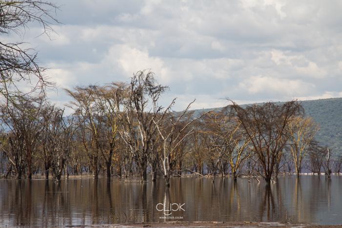Lake_Nakuru_Flood-15