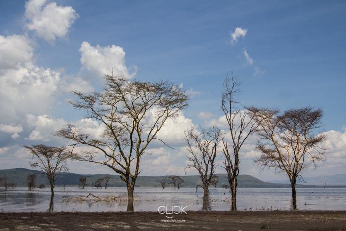 Lake_Nakuru_Flood-16